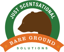 Case Study: Bare Ground